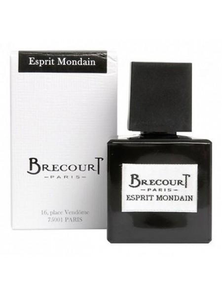 Brecourt Esprit Mondain парфюмированная вода 100 мл