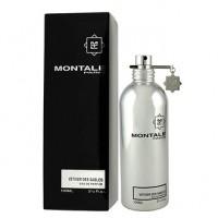 Montale Vetiver Des Sables парфюмированная вода 100 мл
